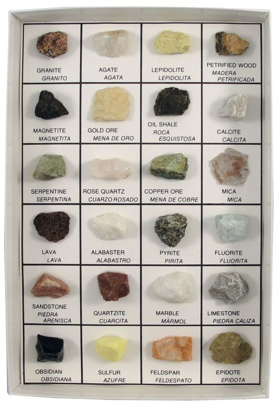 Rocks and Minerals of U.S. Reference Collection (24 pcs.)