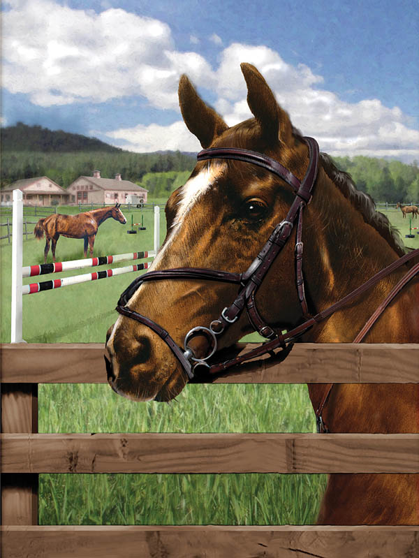 Painting By Numbers - Equine Paddock (Jr Small)