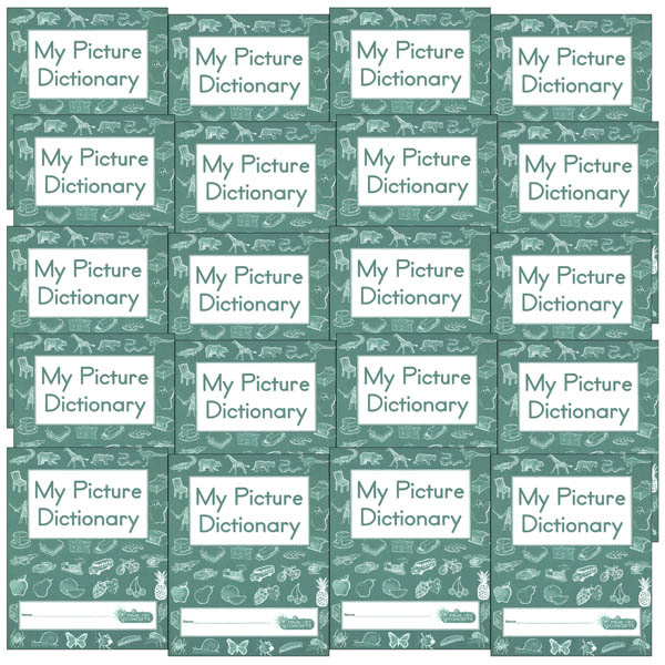 My Picture Dictionary set of 20