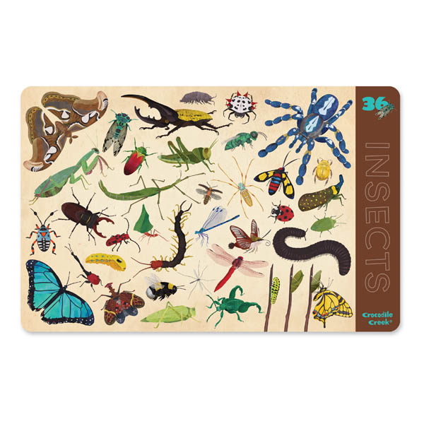 Insects Two-Sided Placemat