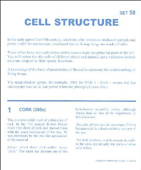 Cell Structure Microslide Lesson Set