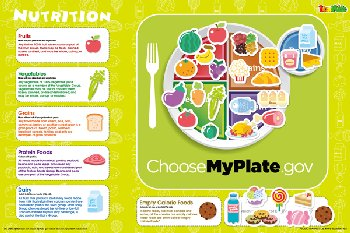 Nutrition Magnetic Wall Sticker