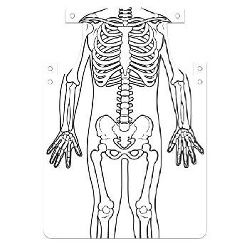 Skeleton Aprons (package of 12)