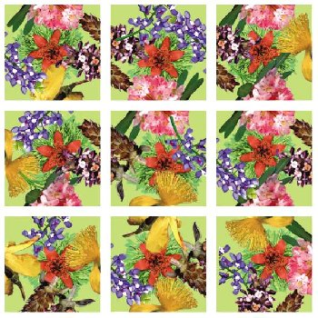 American Native Flowers Scramble Squares
