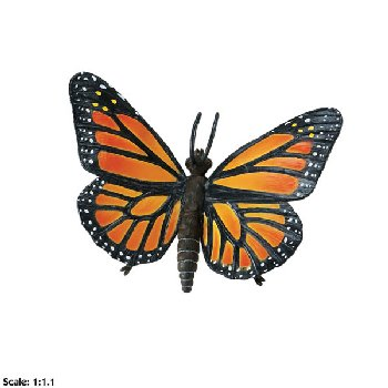 Monarch Butterfly (Incredible Creatures)