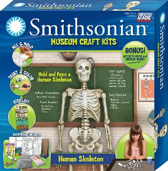 Smithsonian Museum Craft Kit - Human Skeleton
