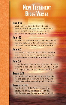 New Testament Bible Verses Mind & Heart Memory Card