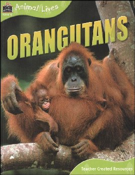 Orangutans - Animal Lives