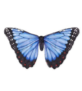 Realistic Butterfly Wings - Blue Morph