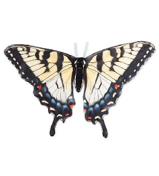 Realistic Butterfly Wings - Swallowtail