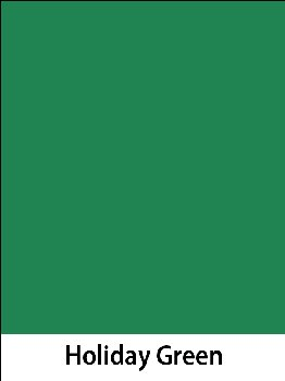 "Construction Paper 76# Holiday Green 9""x12"""
