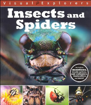 Insects and Spiders (Visual Explorers)