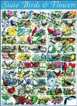 State Birds and Flowers Puzzle - 1000 pc.