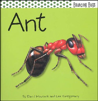 Ant (Bouncing Bugs)