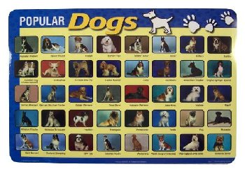 Popular Dogs Placemat