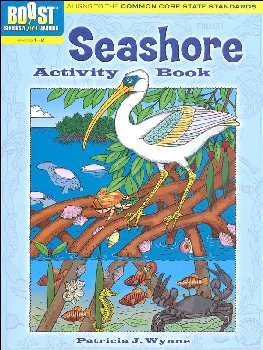 Seashore Activity Book (Boost Series)