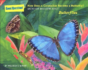 How Does a Caterpillar Become a Butterfly? And Other Questions About Butterflies (Good Questions!)