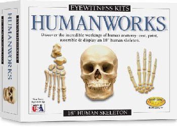 Eyewitness Humanworks Kit