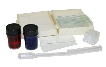 Microscope Slide Making Kit
