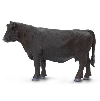 Black Angus Cow (Safari Farm)