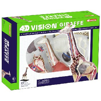 4D Vision Giraffe Anatomy Model