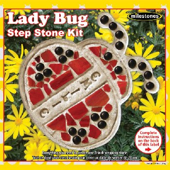 Lady Bug Stepping Stone Kit