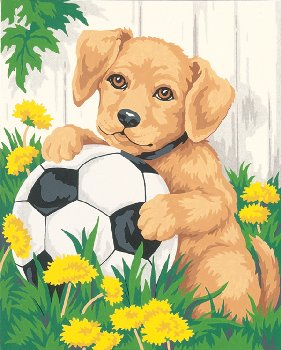 Puppy and Soccer Ball Paint-By-Number (Beginner)