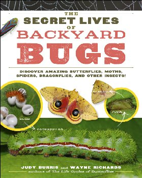 Secret Lives of Backyard Bugs