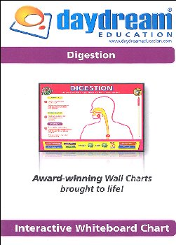 Science Interactive CD-ROM - Digestion