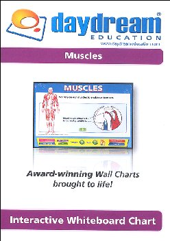Science Interactive CD-ROM - Muscles