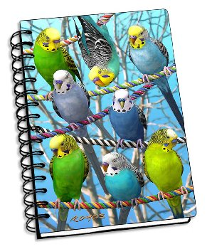 "Budgies 3D Notebook 4"" x 6"""