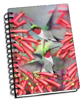 "Hummingbirds 3D Notebook 4"" x 6"""