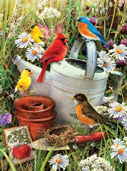 Painting By Numbers - Garden Birds (Junior Small)