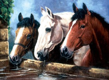 Painting By Numbers - Three of a Kind (Junior Large)