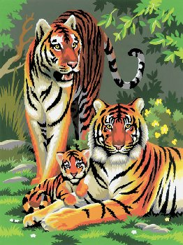 Painting By Numbers - Tigers (Junior Small)