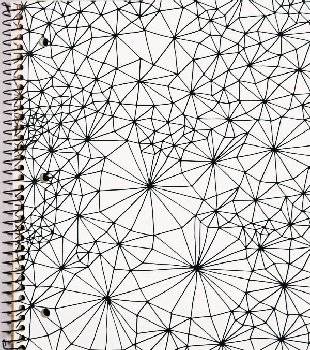 Creation Series 1-Section Notebook: Web Ink Doodle