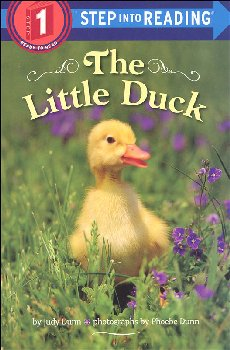 Little Duck (Step into Reading Level 1)