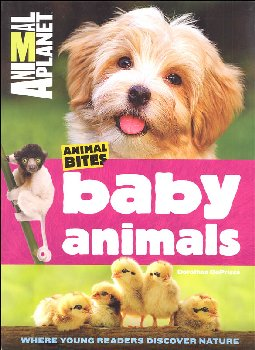Animal Bites Baby Animals