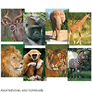 Wildlife Mini-Puzzle 54 piece - assorted