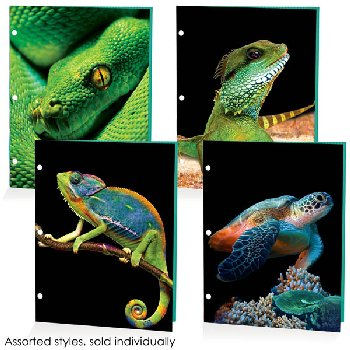Reptiles Dimensional Portfolio Assorted Design