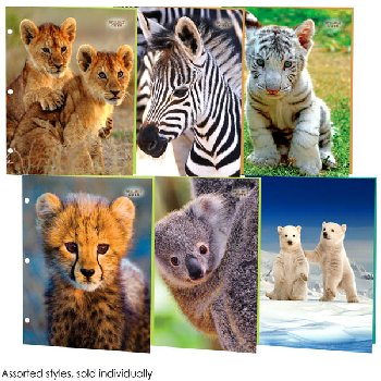 Wildly Cute Portfolio Assorted Furiously Fluffy Design