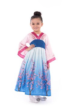 Asian Princess Costume - X-Large