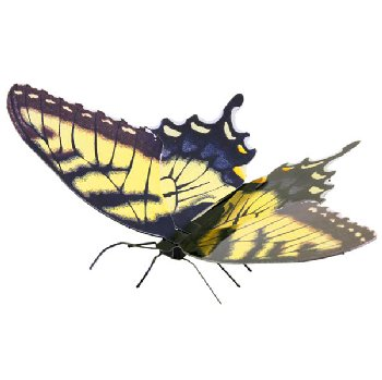 Tiger Swallowtail Butterfly (Metal Earth 3D Model Kit)