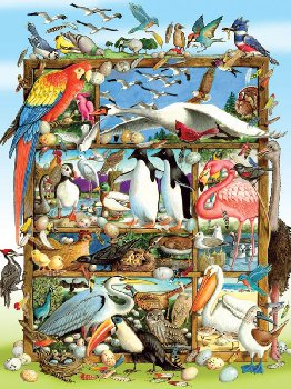 Birds of the World Puzzle (400 piece)