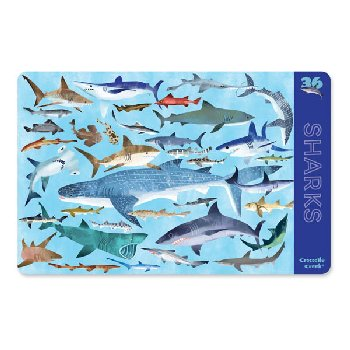 Sharks Two-Sided Placemat