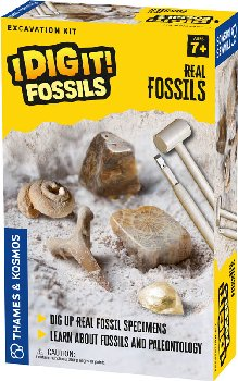 Real Fossils Excavation Kit (I Dig It! Fossils)