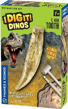 T. Rex Tooth Excavation Kit (I Dig It! Dinos)