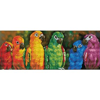 Rainbow Parrots Diamond Dotz Kit (Intermediate)
