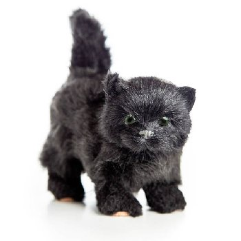 Black Susan the Kitty (Little House Dolls & Accessories)